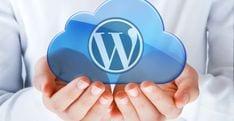 SEO WordPress, SEO for WordPress, WordPress SEO, SEO specialist inhuren