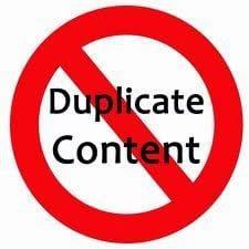 duplicated content, SEO specialist Den Haag